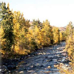 View of the Wenatchee River in the Fall